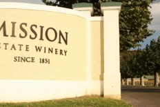 Weddings at Mission Estate Winery : 6053 - WeddingWise Lookbook - wedding photo inspiration