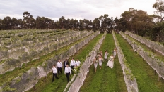 Danielle & Joel - Drone Photos - Clearview Estate Napier: 16846 - WeddingWise Lookbook - wedding photo inspiration