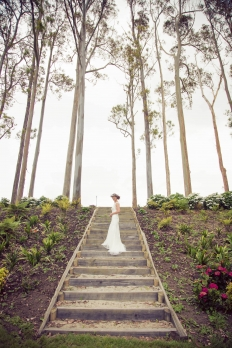 Matakana Island Inspiration Shoot: 8039661 - WeddingWise Lookbook - wedding photo inspiration