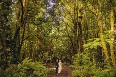 woodland wedding: 14572 - WeddingWise Lookbook - wedding photo inspiration