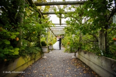 Gemma and Peter wedding: 7285 - WeddingWise Lookbook - wedding photo inspiration