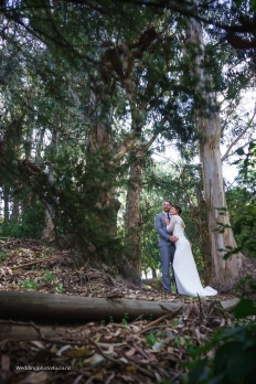 Claire and Scott: 13742 - WeddingWise Lookbook - wedding photo inspiration