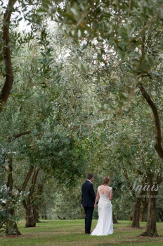 Simplicity in the Vineyard - Love among the trees: 8555 - WeddingWise Lookbook - wedding photo inspiration
