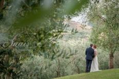 Simplicity in the Vineyard - Love among the trees: 8559 - WeddingWise Lookbook - wedding photo inspiration