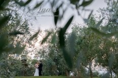 Simplicity in the Vineyard - Love among the trees: 8565 - WeddingWise Lookbook - wedding photo inspiration