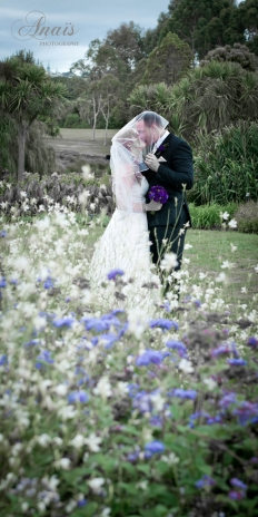 Wedding in the Green - Pictures in the Park: 7801 - WeddingWise Lookbook - wedding photo inspiration
