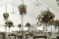 marquee wedding : 14980 - WeddingWise Lookbook - wedding photo inspiration