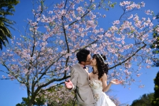 sakura collection: 10163 - WeddingWise Lookbook - wedding photo inspiration