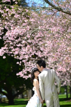 sakura collection: 10165 - WeddingWise Lookbook - wedding photo inspiration