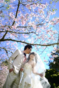 sakura collection: 10164 - WeddingWise Lookbook - wedding photo inspiration