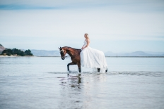 Samantha & Jaron: 13557 - WeddingWise Lookbook - wedding photo inspiration