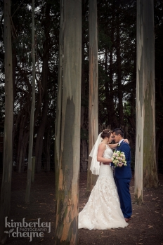 Wedding - Dunedin: 14072 - WeddingWise Lookbook - wedding photo inspiration