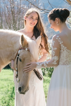 Weddings: 16971 - WeddingWise Lookbook - wedding photo inspiration