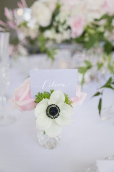 Garden romance: 10488 - WeddingWise Lookbook - wedding photo inspiration
