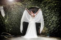 Weddings at Mission Estate Winery : 6043 - WeddingWise Lookbook - wedding photo inspiration
