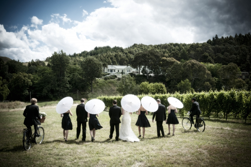 Weddings at Mission Estate Winery : 6049 - WeddingWise Lookbook - wedding photo inspiration