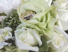 Karl & Lauren: 5632 - WeddingWise Lookbook - wedding photo inspiration