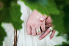 Love Birds: 7331 - WeddingWise Lookbook - wedding photo inspiration