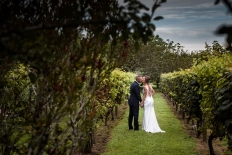 LAUREN & DANIEL WEDDING PHOTOS - MARKOVINA VINEYARD: 16721 - WeddingWise Lookbook - wedding photo inspiration