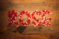 Autumn in Freeze dried rose petals: 11402 - WeddingWise Lookbook - wedding photo inspiration