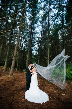 AIMEE + EV :: ALLELY ESTATE :: AUCKLAND WEDDING PHOTOGRAPHY :: THE LAUREN + DELWYN PROJECT: 12445 - WeddingWise Lookbook - wedding photo inspiration