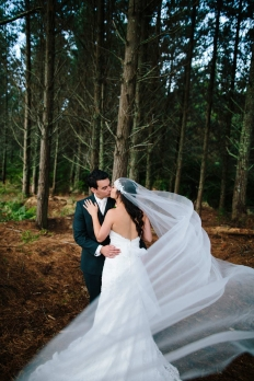 AIMEE + EV :: ALLELY ESTATE :: AUCKLAND WEDDING PHOTOGRAPHY :: THE LAUREN + DELWYN PROJECT: 12444 - WeddingWise Lookbook - wedding photo inspiration