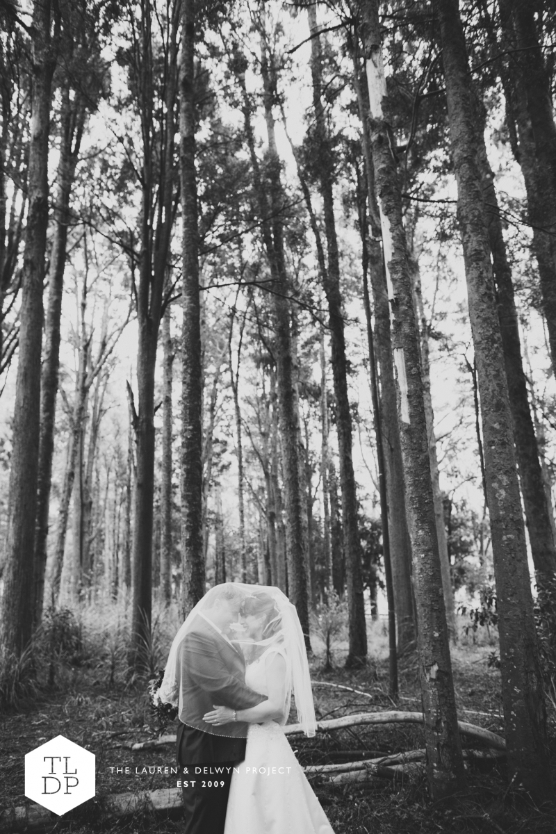 Rebecca + Rob :: Auckland Wedding Photographers :: The Lauren + Delwyn Project: 12068 - WeddingWise Lookbook - wedding photo inspiration