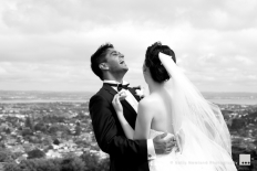 Kelly Newland Photography - Weddings: 4419 - WeddingWise Lookbook - wedding photo inspiration