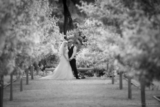 Marshall Masters Collection: 10979 - WeddingWise Lookbook - wedding photo inspiration