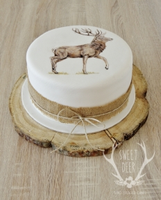 PAINTED CAKES: 10206 - WeddingWise Lookbook - wedding photo inspiration