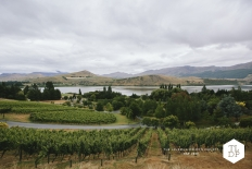 Julie + Greg :: Stoneridge Estate :: Queenstown Wedding Photography: 13994 - WeddingWise Lookbook - wedding photo inspiration