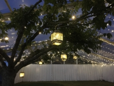 Garden Weddings with Clear Marquees: 17195 - WeddingWise Lookbook - wedding photo inspiration