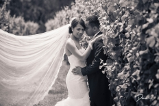 Moments In Love: 4806 - WeddingWise Lookbook - wedding photo inspiration