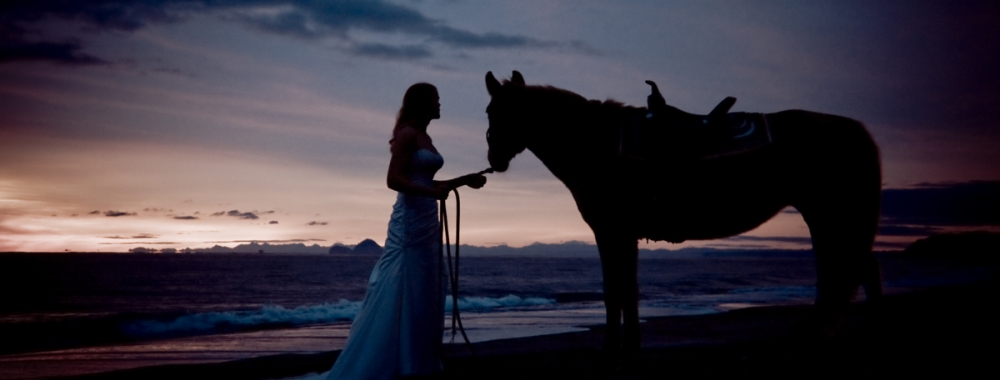 Photo Inspiration: Sunrise + Beach + Horse - WeddingWise Articles
