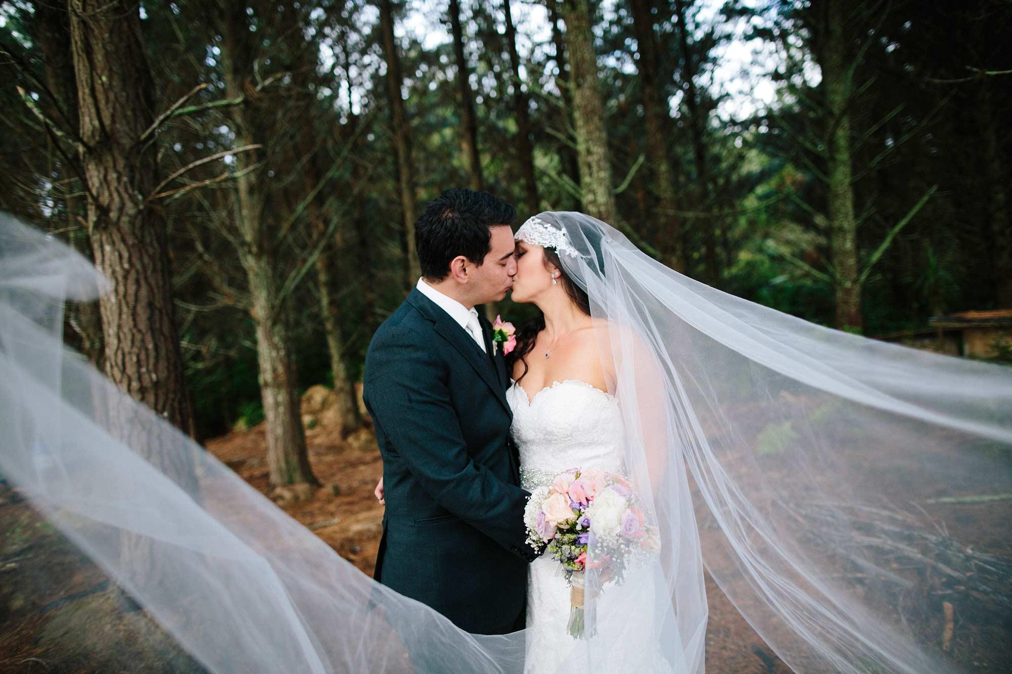Coromandel forest wedding