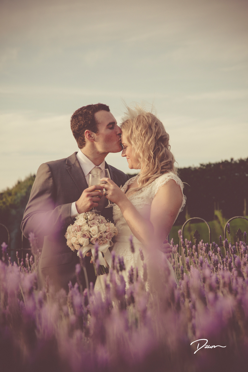 Moments In Love: 4795 - WeddingWise Lookbook - wedding photo inspiration